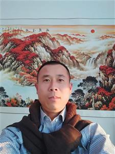 天津鼎盛麒金属材料销售有限公司